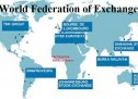 The NSE from today, a full member of WFEs