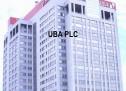 UBA grow shareholders' fund to N265 billion in 2014