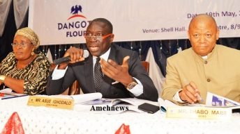 Is Dangote Flour Mills' Return to Profitability?
