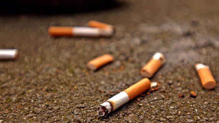 Tobacco kills seven million people, gulps $1.4 trillion annually – WHO