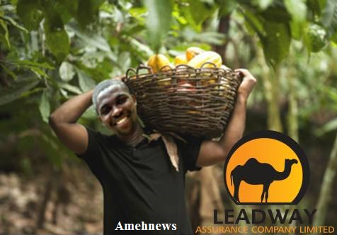 Leadway Agric Insurance Policy To Boost Food Production
