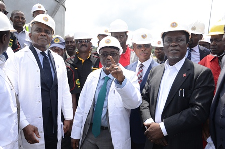 Baru Orders Assessment of Escarvos to Lagos Gas Pipeline Fire, Restoration of Line