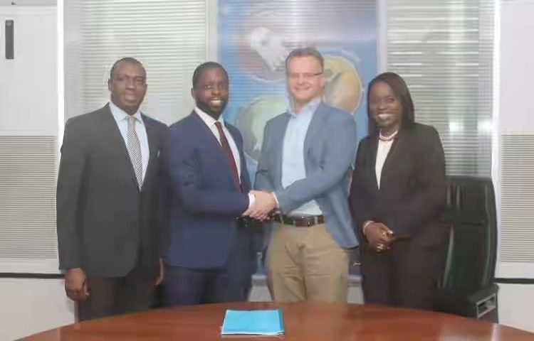 Nigerian Breweries to Links Ibadan Brewery plant with solar power, first of its kind in Africa
