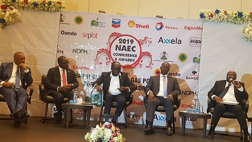 FG should invest more in gas to power projects