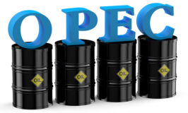 OPEC cuts 2020 oil demand forecast