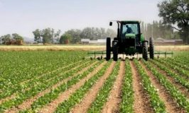 NAHCO to life agric export